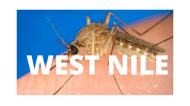 Lee county resident becomes states 2nd case of West Nile in 2020